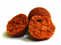 Select Baits Bio-Krill+ N-Butyric & Indian Spice Boilie