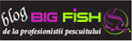 Big Fish Blog