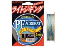 Fir Raiglon PE Acrobat Light Jigging 4 Braided 100m Multicolor