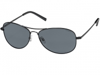 Polaroid PLD 1004/S Matt Black Sunglasses