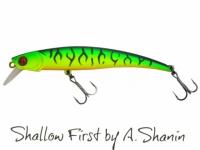 Pontoon21 Shallow First A42 70SP-SR