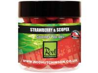 Pop-up Rod Hutchinson Strawberry and Scopex