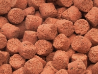 Sensas Club Strawberry Pellets