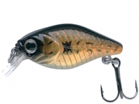 River2Sea Baby Crank 3cm 2g Gold Back