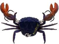Vobler Westin Coco the Crab 2cm 6g Disco Crab S