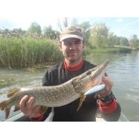 Fox Water Taxi 9.5cm 17g
