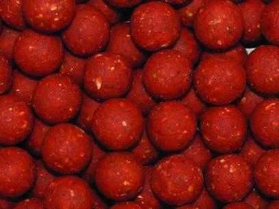 Boilies Essential Baits Shellfish B5