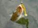 Crazy Fish Scalp Minnow 8cm 18 Shrimp
