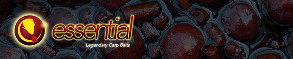 Essential Baits