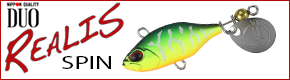 DUO Realis Spin